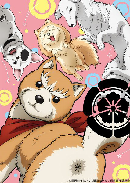 Imagem promocional do anime de Oda Shinamon Nobunaga